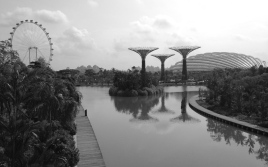 View of Gardens by the Bay