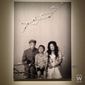Some Days, Wang Ningde [Flux Realities exhibit at ArtScience Museum]